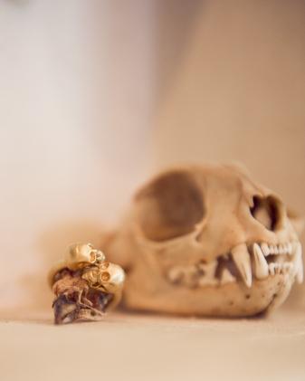 Lucas Jack Double Skull Ring