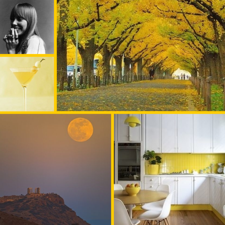 Best of our Boards- Yellow